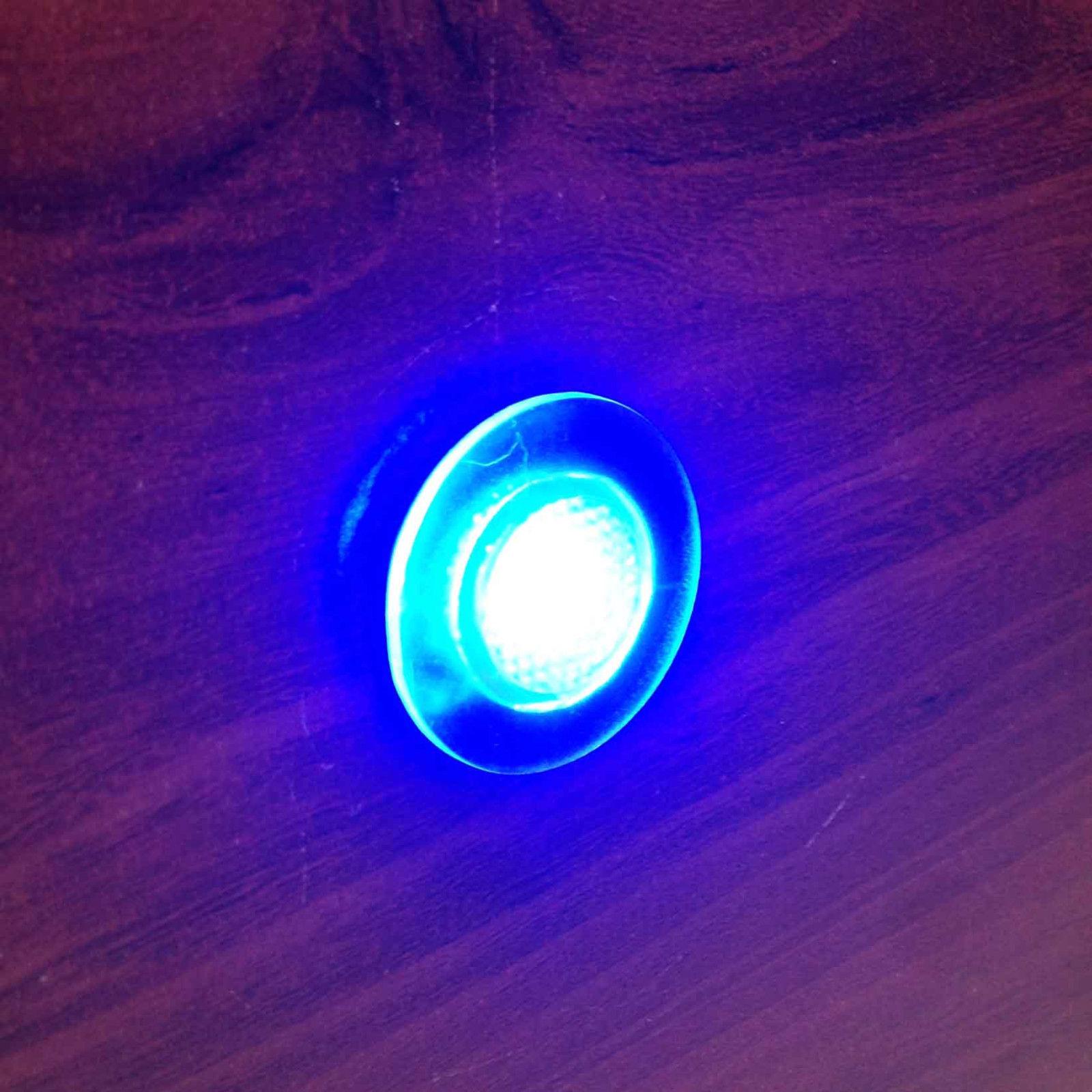 Marine Led Boat Lights: MARINE BOAT LED LIVEWELL ROUND BUTTON BLUE COURTESY LIGHT